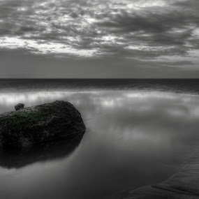 Weeping emerald eye by Haavard Lien - Landscapes Beaches ( clouds, sand, reflection, moss, stone, beach )