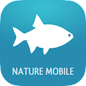 Fish 2 PRO - Field Guide