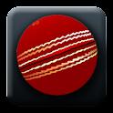 World Cricket News logo