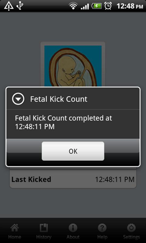 Fetal Kick Count - screenshot