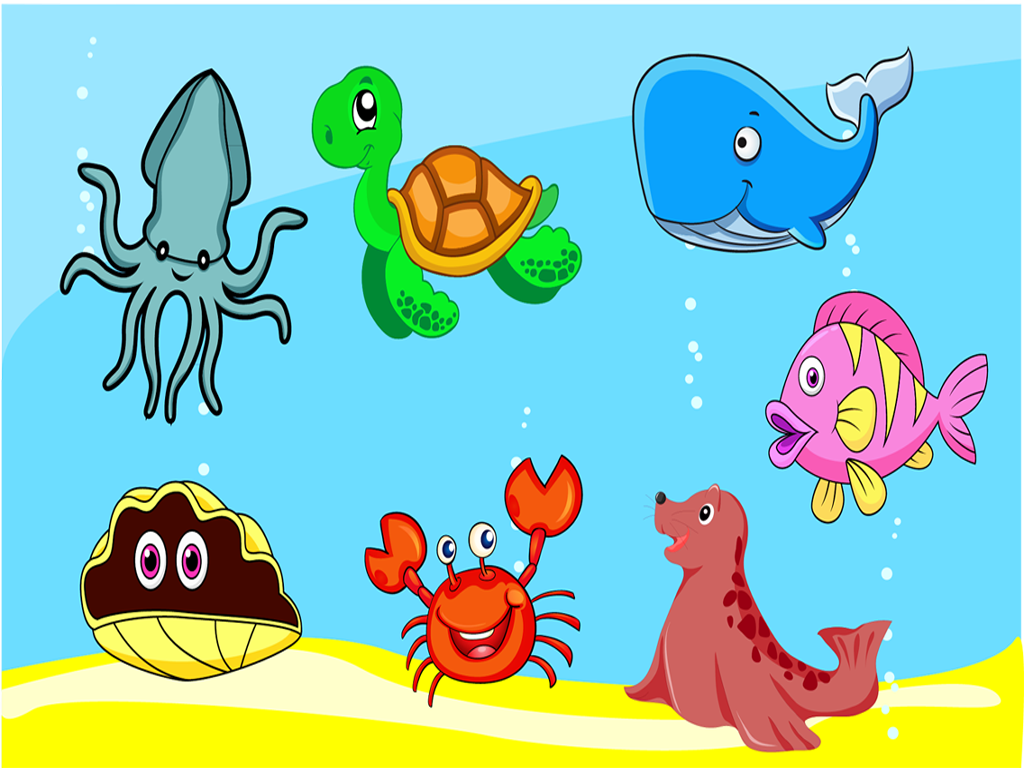 Sea Animals Pictures For Kids