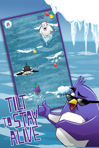 Extreme Penguin Surfing Crush