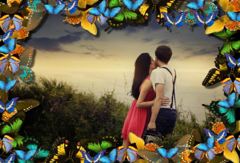 butterfly photo frames screenshot