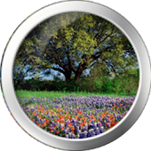 Spring Clock Widget