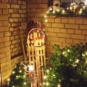 More Christmas Garden Decorations by Joe Harris - Uncategorized All Uncategorized ( sledding, snow, christmas, decorations, garden )