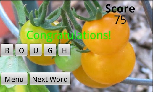 Word Jumble - screenshot thumbnail