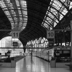Track Ten by Rich Eginton - Transportation Trains ( industrial look, b&w, open air, tracks, trains, , vertical lines, pwc )
