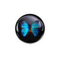 Crystal Butterfly Wallpapers icon