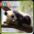 Panda Wallpapers file APK Free for PC, smart TV Download