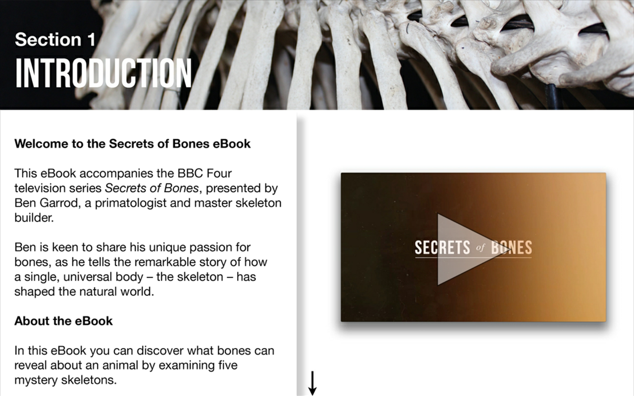 BBC Secrets of Bones- screenshot