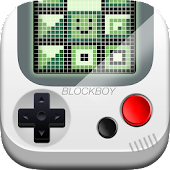 BlockBoy Falling Blocks Puzzle