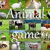 Animal Game IT