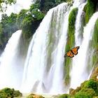 Waterfall Free Live Wallpaper icon