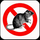 Anti Rat Pro icon