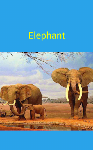 【免費教育App】know animal by sound & picture-APP點子