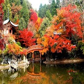Autumn in Japan Wallpapers HD