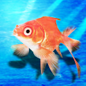 goldfish scooping β logo