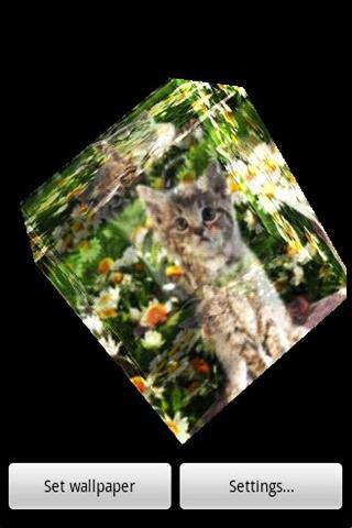 3D cat 10- screenshot