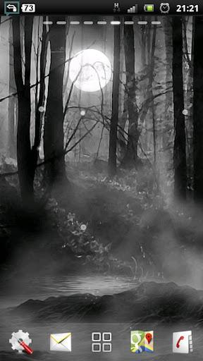 晚上的薄雾的森林 LWP