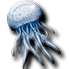 meduse icon