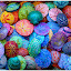 Colored Sea Shells  by George Herbert - Abstract Patterns ( abstract, bright, colorful, seashell, ocean )