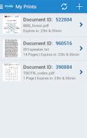Screenshot of EFI PrintMe