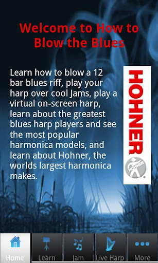 Hohner Learn to Play the Blues