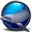 Dolphins Real 3D icon
