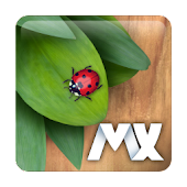 MXHome Theme Bug's life