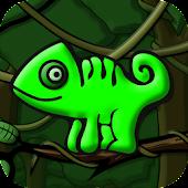 Cheeky Chameleon