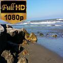 LIVE THE CASPIAN SEA FULL HD icon