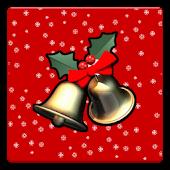 Christmas Camera