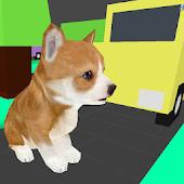 Crossroad Puppy