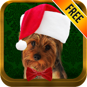 Pet Holidays-FREE Pet Pic App