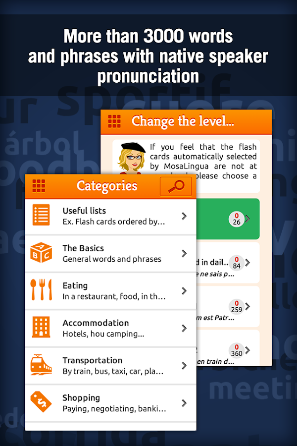Learn French with MosaLingua - screenshot
