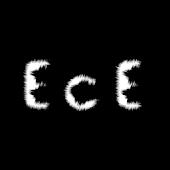Extraordinary Circle E.