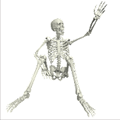 PoseableSkeleton