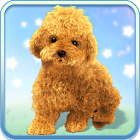 Talking Teddy Bear Dog icon