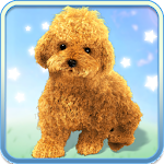 Talking Teddy Dog 1.0.4 APK for Android APK
