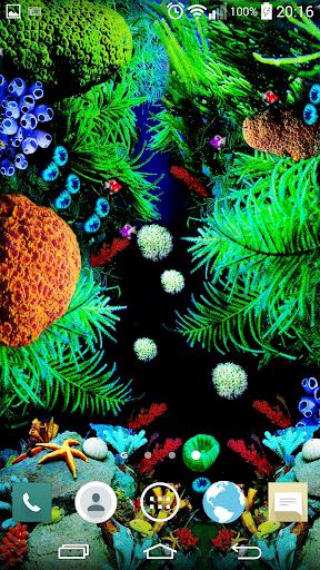 Aquarium live wallpapers QHD