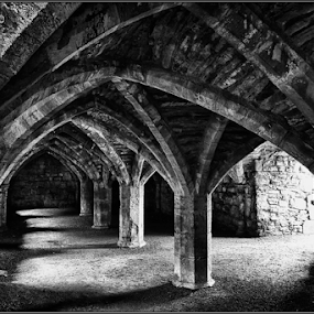 Finchale Priory by Griff Johnson - Buildings & Architecture Public & Historical ( english heritage, durham, church, black and white, priory, finchale priory, #GARYFONGDRAMATICLIGHT, #WTFBOBDAVIS )