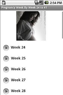 Pregnancy guide Weeks 24 to 41