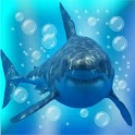 Angry Shark Under Water Waves icon