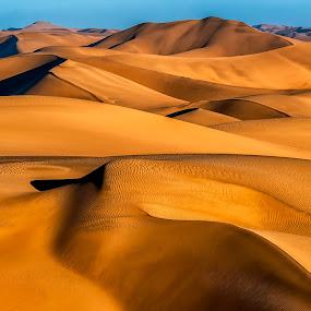 Shaping the Namib by Johan Jooste Snr - Landscapes Deserts ( sand, dunes, namib desert, desert, namibia, shapes )