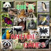 Guess Animal Games