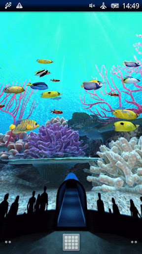 Coral Reefs World Trial