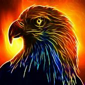 Fire Eagle LW