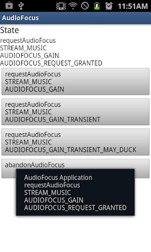 AudioFocus Checker