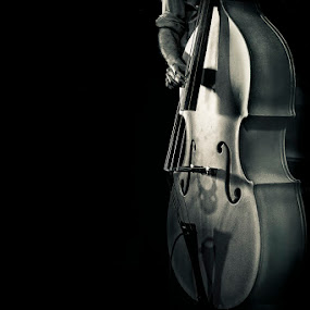 Bass by Jay Anderson - Artistic Objects Musical Instruments