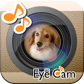 EyeCam -Catch the Eyes-